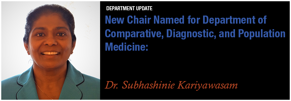 CDPM Chair Named