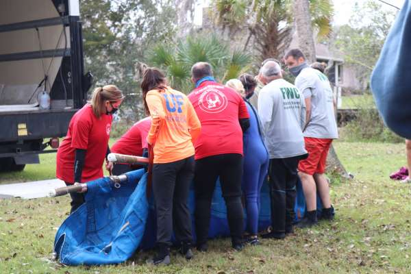 Release of a manatee named Carmen at Three Sisters Springs, Crystal River FL